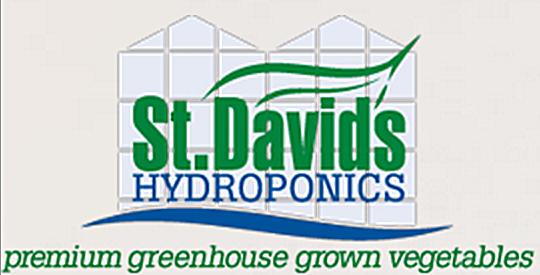 Customer_St.Davis