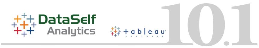 DataSelf Analytics 10 1