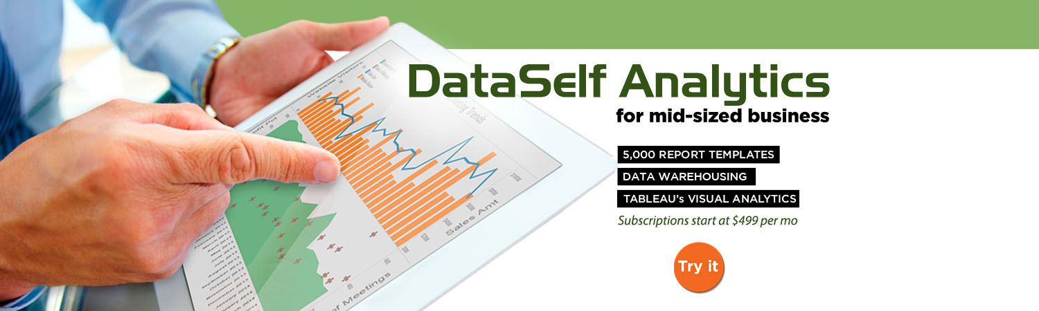 DataSelf Business Intelligence for SMBs | Tableau | Power BI