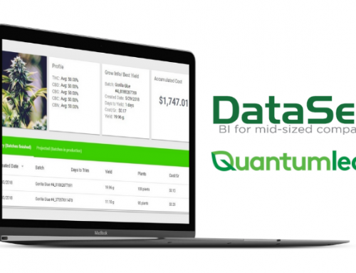 "Quantumleaf and DataSelf Empowering Cannabis Companies with ""Quantumleaf Analytics"""